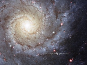 Kierteisgalaksi M74, joka on hyvin samanlainen kuin meidän Linnunratamme, mutta himena pienempi kooltaan. Kuva: HubbleSite