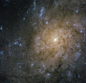 Tämä kierteisgalaksi NGC 7793 sijaitsee n. 13 milj.valovuoden päässä maasta. Tämän galaksin muoto on epätavallinen, sillä sen kierteishaarat eivät erotu selkeästi. Tiedemiehet ovat löytäneet tästä galaksista mikrokvasaarin, joka on musta aukko, joka imee materiaa, mutta se sijaitsee poikkeavasti muualla kuin galaksin keskuksessa. Kuva: ESA Hubble.