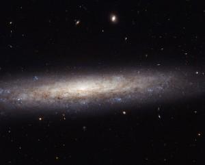 Tässä on sivulta nähtynä melko säännöllinen kierteisgalaksi NGC 4206, joka sijaitsee Neitsyen tähtikuviossa 70 milj.valovuoden päässä ja näkyy harrastelijan laitteillakin. Siniset alueet reunoilla ovat niitä, joissa syntyy uusia tähtiä. Kuva: ESA Hubble.